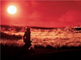 《泠:落日孤行》:一款光靠战斗就能让你高潮的游戏!