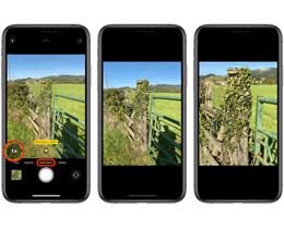 如何在 iPhone 11 Pro  系列纵向拍摄模式下切换焦距?