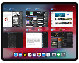 如何在 iPadOS 中使用 AppExposé 展开同一应用多窗口显示?