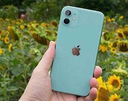 苹果 iPhone 11 如何截长图?