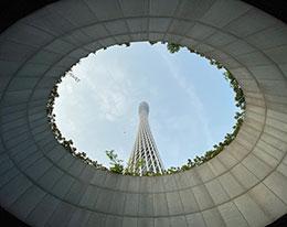 苹果官网展示摄影师 iPhone 11 Pro 镜头中的中国风貌