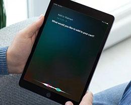 沃爾瑪與蘋果達成合作,用戶可通過 Siri 來進行語音購物