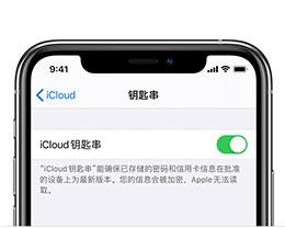 iPhone 11设置iCloud钥匙串方法教程