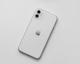 如何使用 iPhone 11 的「人像模式」拍攝非人物體?