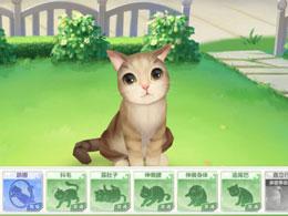 萌宠猫咪互动!《喵与筑》猫咪养成全攻略进阶篇