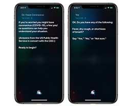 英语版 Siri 可提供新冠肺炎的症状初步判断