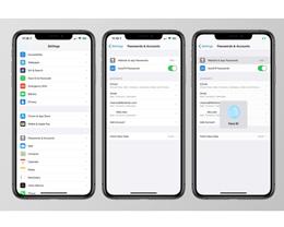 iOS 14:钥匙串密码管理增强,加入更多 1Password 功能