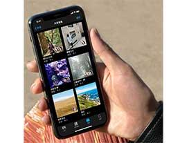 iPhone 如何创建和管理共享相簿?