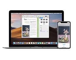 在 iPhone 上复制的内容如何快速粘贴到 iPad 上?