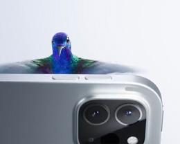 苹果分享 iPad Pro 广告,与蜂鸟一起「悬浮」