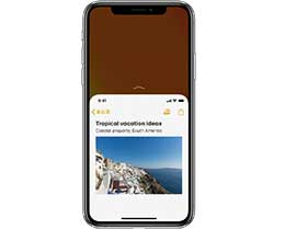 iPhone SE 2 支持单手操作模式吗?