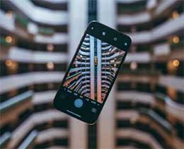 2020 年度 iPhone 摄影大赛结果公布