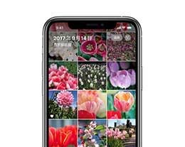 升级 iOS 14 后如何为照片添加自定义标题?