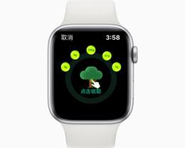 Apple Watch 支付宝新功能发布:一键收取蚂蚁森林能量