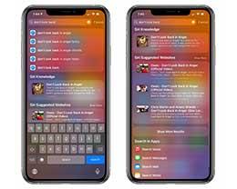 iPhone 实用的搜索框功能,在 iOS 14 beta 4 中再次优化