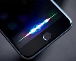 iOS 14 beta 6 修复搜索框不显示 Siri 建议的问题:如何再次隐藏?