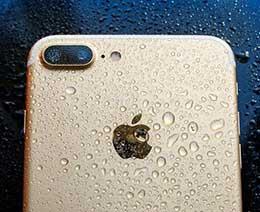 iPhone 防尘抗水性能达到 IP68 级别,可以放在水下拍照吗?