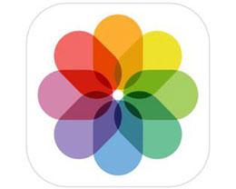 iOS 14 教程:如何在 iPhone 和 iPad 上的照片库中过滤图像?