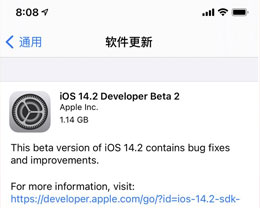 iOS 14.2 beta 2修复了哪些bug?附iOS 14.2 beta 2使用反馈