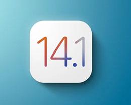 苹果发布 iOS 14.1正式版:iPhone 12/mini/Pro/Max 预计首发搭载