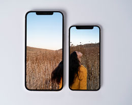 国行 iPhone 12 mini 与 iPhone 12 Pro Max 今日开启预定