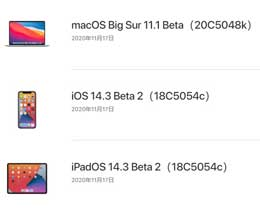 苹果 iOS 14.3/iPadOS 14.3 Beta 2更新内容及升级方法