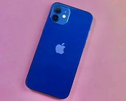 如何查看 iPhone 12 电池生产厂商等详情?