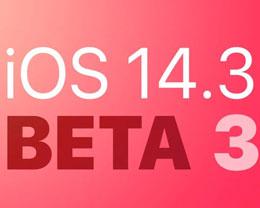 苹果发布 iOS 与 iPadOS 14. 3开发者测试版 beta 3,支持 ProRAW