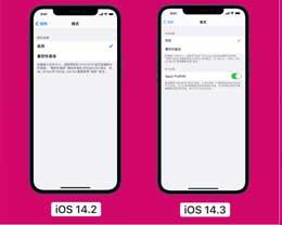 如何在运行 iOS 14.3正式版的iPhone 12上拍摄 ProRAW 格式照片?