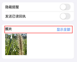 如何快速查找 iMessage 信息中的图片等附件?