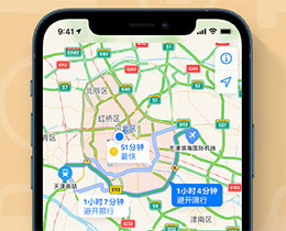 iOS 14 小技巧:使用地图 App 添加车牌以获取限行提醒