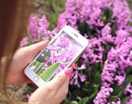 使用爱思助手轻松管理iPhone X中的照片
