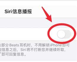 iPhone 12信息播报功能开启和关闭方法