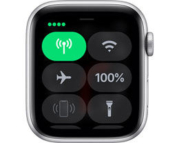 如何在 Apple Watch 上设置蜂窝网络?