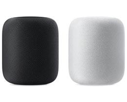 macOS Big Sur 11.3 Beta 已支持双 HomePod 立体声组合