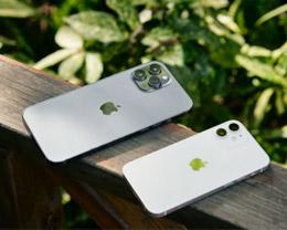 苹果通知授权店:某些 iPhone 12 硬件问题不需要再更换整个设备