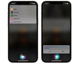 iOS 14.5 新功能:更改默认的音乐应用