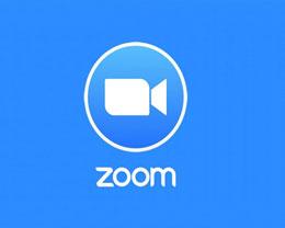 苹果为 Zoom 提供特殊待遇:可在 iPad 分屏时使用摄像头