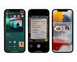 调查显示:用户对苹果 iOS 15 和 iPadOS 15 并不满意