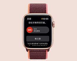 """如何在 Apple Watch 中开启""""摔倒检测""""?"""