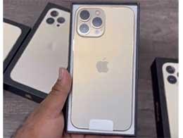 首个苹果 iPhone 13 Pro Max 开箱视频曝光:全新金色,包装无塑封