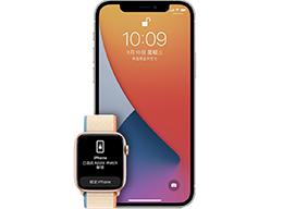 苹果确认将在后续更新中修复 iPhone 13 无法使用 Apple Watch 解锁的问题
