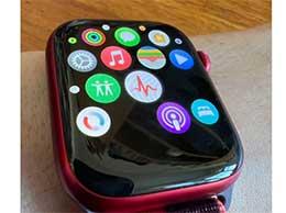 """苹果 Apple Watch Series 7 出现""""部分应用图标不显示""""问题"""