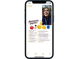 """如何在 iPhone 13 上使用""""画中画""""功能执行多任务?"""