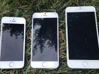 苹果iPhone6将于10月14日上市