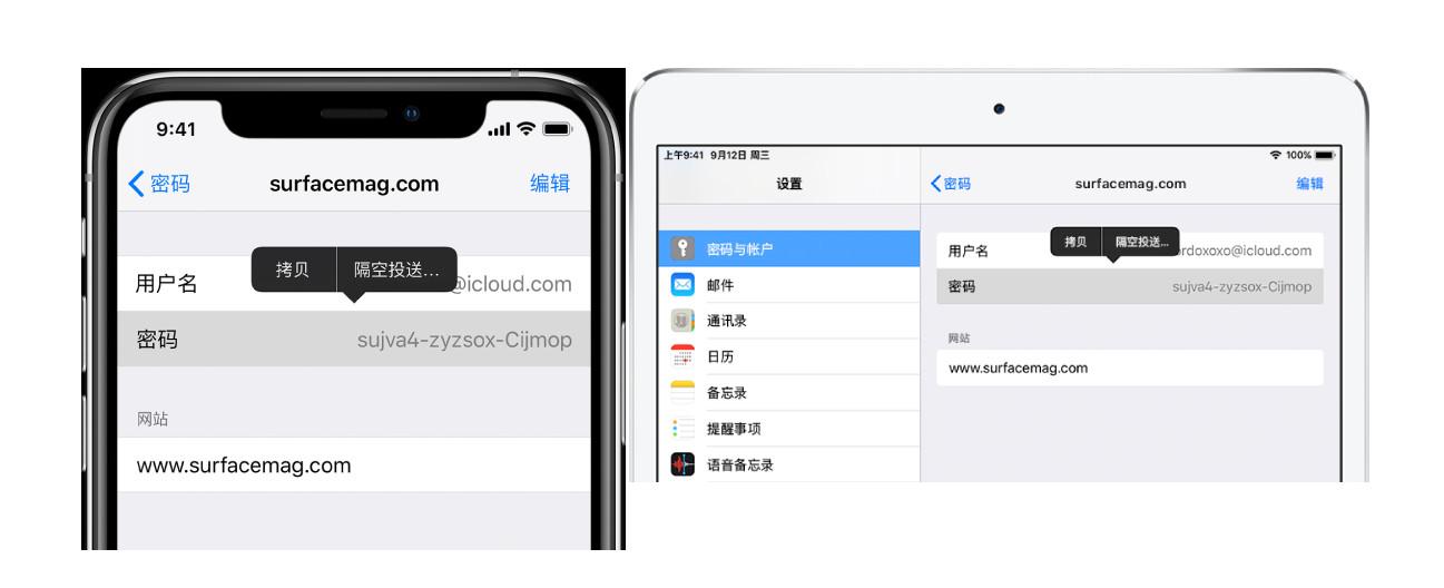 如何在 iPhone、iPad 上共享网站或应用密码?