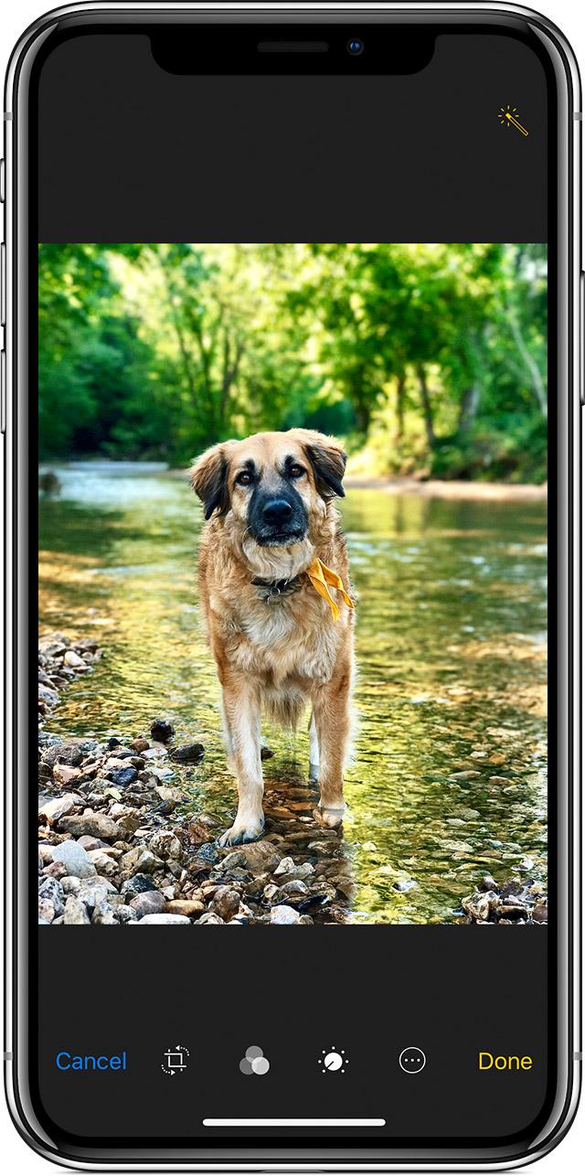 如何在 iPhone 上一键美化照片?