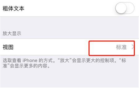 如何调整iPhoneXs Max应用图标的大小?
