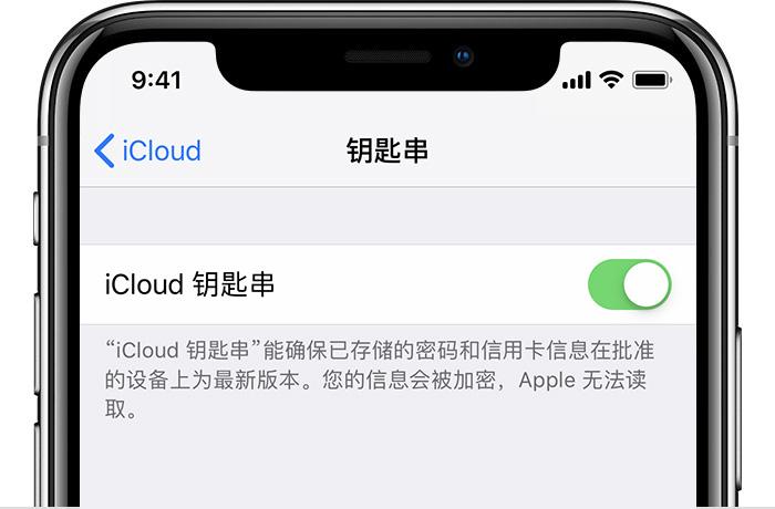 如何更改 iCloud 钥匙串中储存的密码?