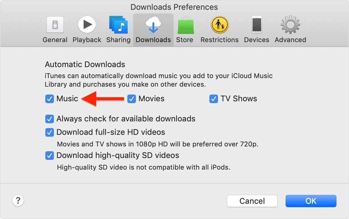 如何开启 Apple Music 中的歌曲自动下载?